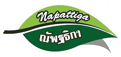 Napattiga是什么牌子_娜帕蒂卡品牌怎么样?