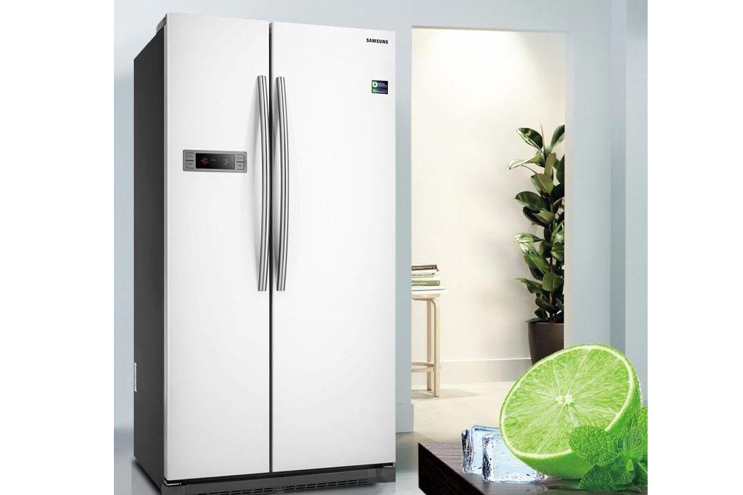 三星双门冰箱哪款好?三星双门冰箱多少钱?-1