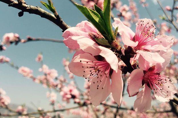 春季如何护肤?以下注意事项需牢记-1