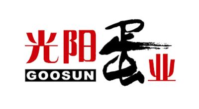 GOOSUN是什么牌子_光阳品牌怎么样?