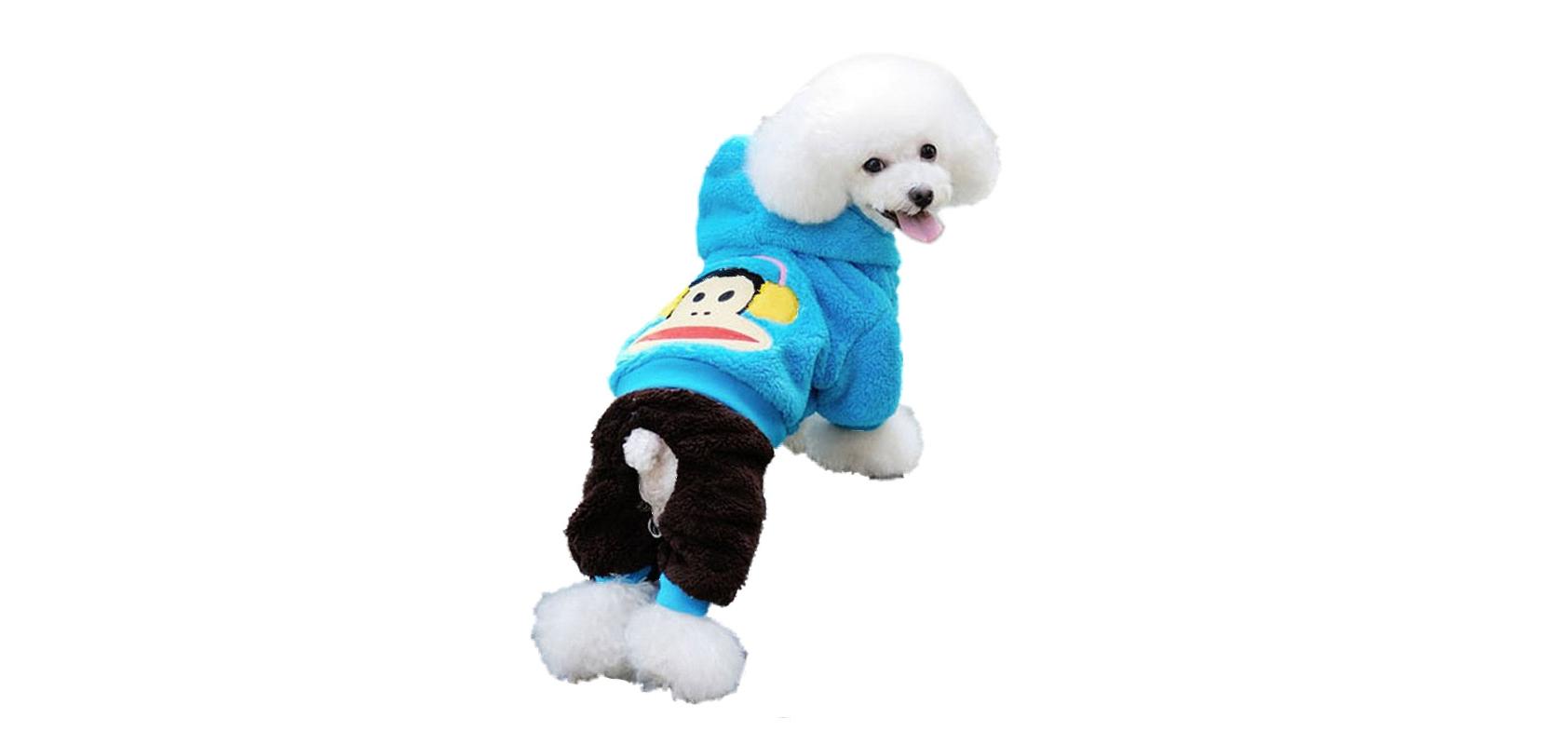 哈格宠物用品狗生理裤