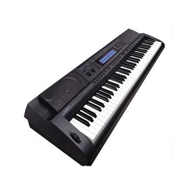 电子琴哪个牌子好_2020电子琴十大品牌-百强网